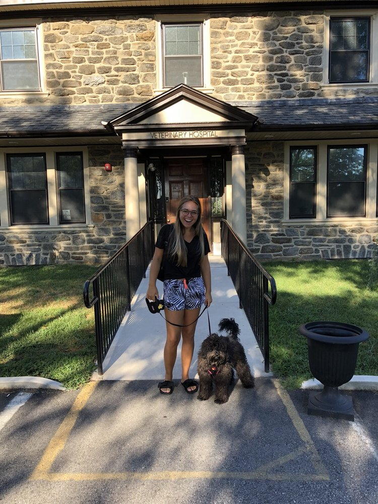 Wissahickon Creek Veterinary Hospital