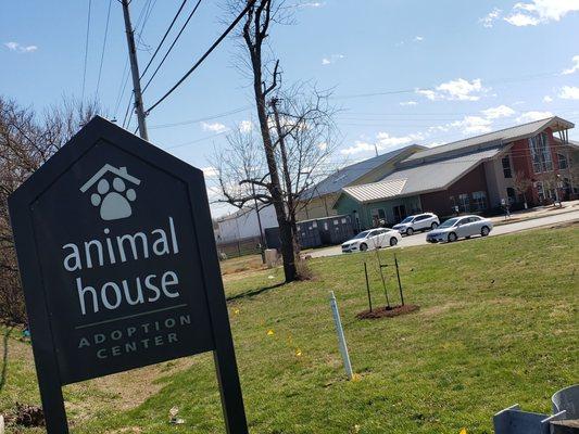 Animal House Adoption Center 3516 Newburg Rd Louisville Ky Animal