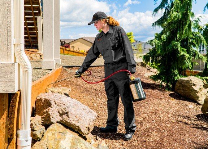 Ehrlich Pest Control: 160 JARI Dr, Johnstown, PA