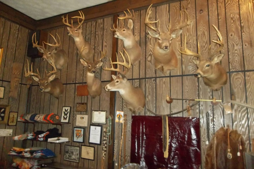 Shawnee Ridge Hunting: 2240 W Fork Rd, Stout, OH