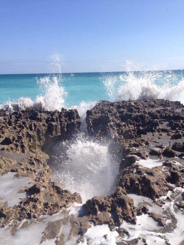 Auto Service Near Me >> Photos for Blowing Rocks Preserve - Yelp