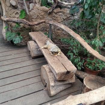 zoologischer garten eberswalde 135 fotos 39 beitr ge zoo am wasserfall 1 eberswalde. Black Bedroom Furniture Sets. Home Design Ideas