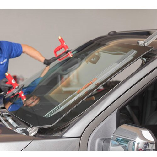 Chapin Auto Glass