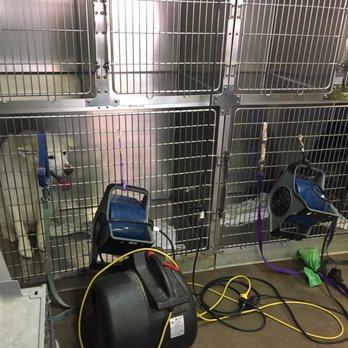 Bark n wash 69 photos 56 reviews pet groomers 15426 e photo of bark n wash centennial co united states just as an solutioingenieria Choice Image