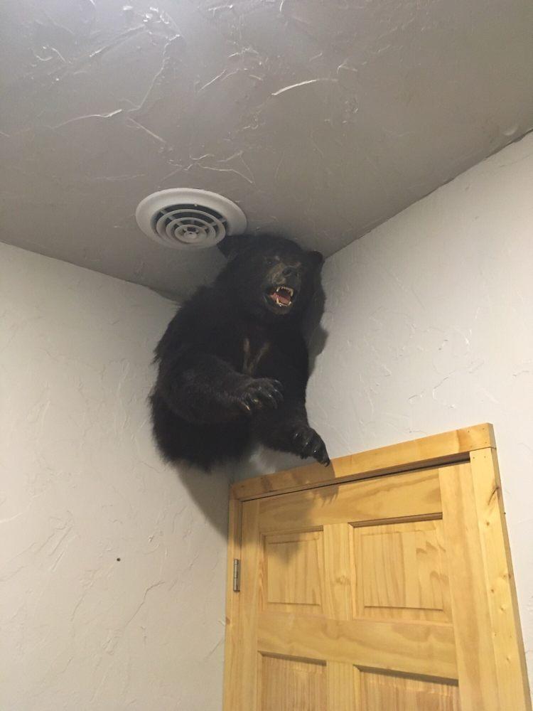 Bears Den: 4582 Main St, Bruno, MN