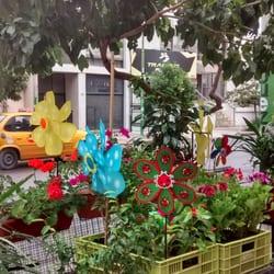 El Jardín Flores y Plantas - Nurseries & Gardening - 25 de ...