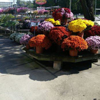 Pandy s garden center nurseries gardening 41600 griswold rd elyria oh phone number yelp for Pandy s garden center