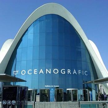 Oceanogr fic 236 photos 75 reviews aquariums for Oceanografic valencia