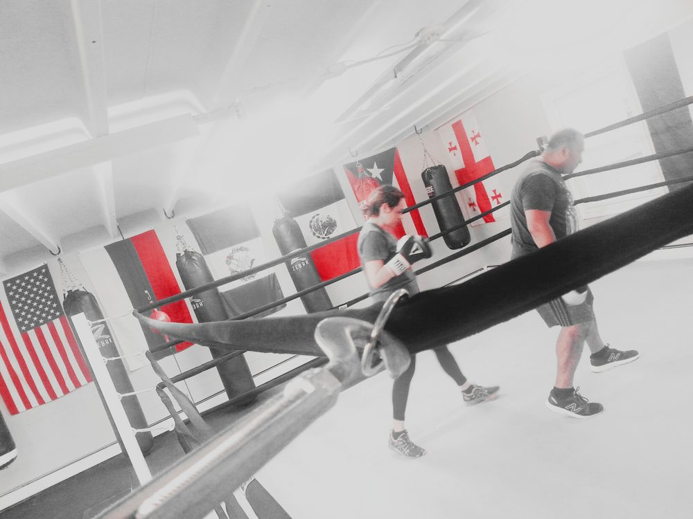 Ace Fitness & Boxing: 1292 Old Skokie Valley Rd, Highland Park, IL