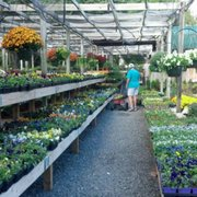 Photo Of Southern Styles Nursery Garden Ctr Charlotte Nc United States