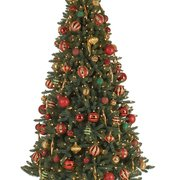balsam spruce tree photo of christmas tree market beaverton or united states - Christmas Tree Market