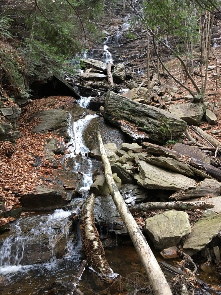 Lye Brook Falls Trail: Off E Manchester Rd, Manchester Center, VT