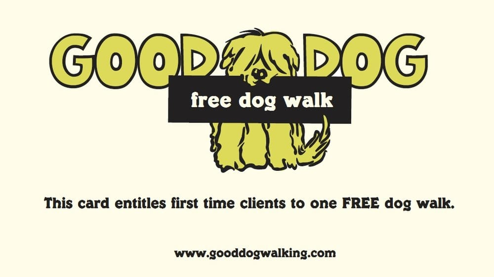 Dog Walking Service Midtown West Ny