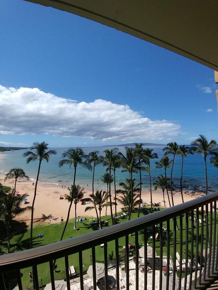 Hawaiian Door & Window Screens: Makawao, HI