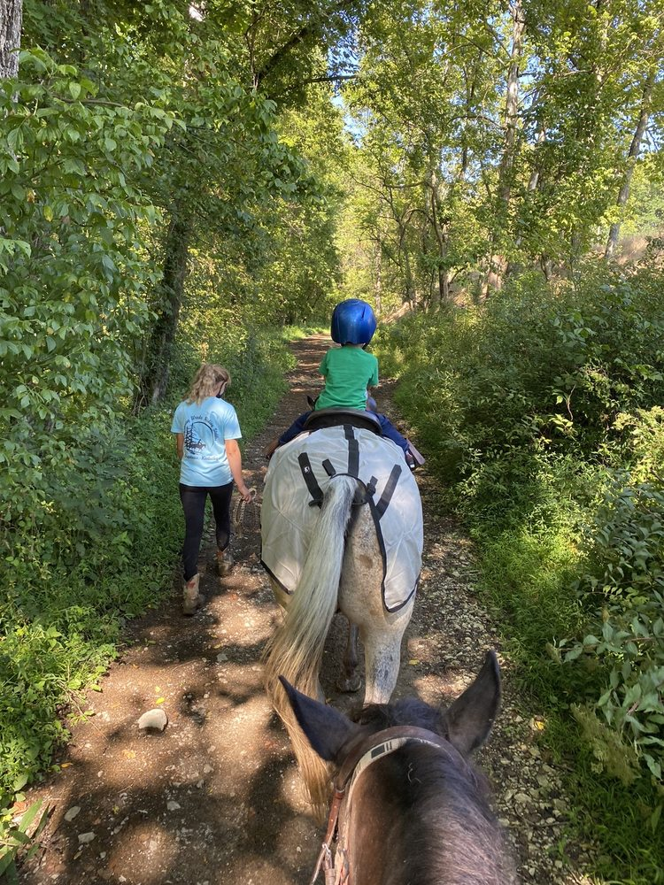 Social Spots from Whispering Woods Riding Stables