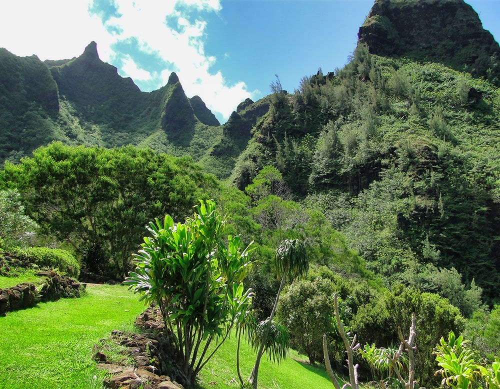 Mount Makana Overlooking The Magnificent Limahuli Garden
