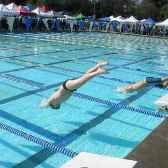 bear swimming 21 photos swimming pools 5075 appian way el sobrante ca phone number yelp
