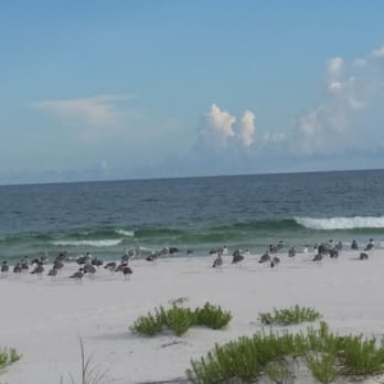 Photo Of Fort Pickens Gulf Islands National Park   Pensacola Beach, FL,  United States