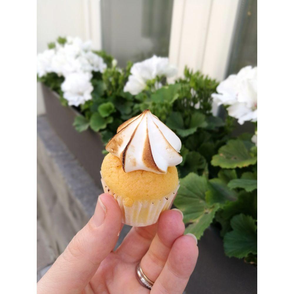 momade cupcakes - 1000×1000