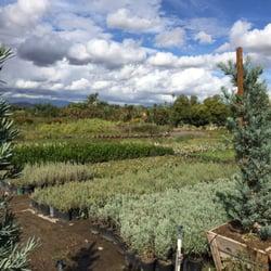 Photo Of Paradise Garden Center Riverside Ca United States