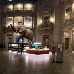 Museo Smithsonian.Smithsonian National Museum Of Natural History 4339 Mga Larawan At