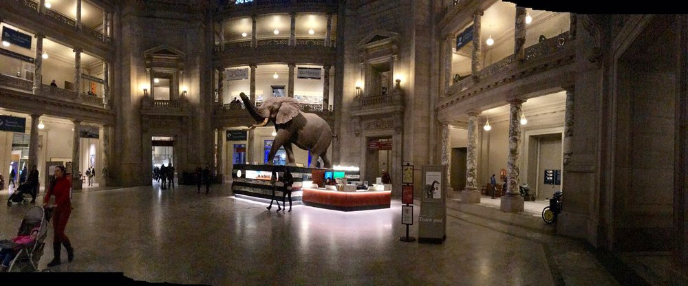 Smithsonian National Museum of Natural History: 1000 Constitution Ave NW, Washington, DC, DC