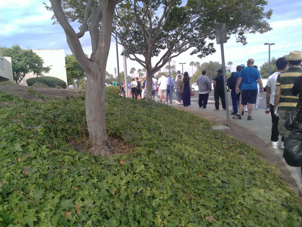 100 people lining up 30 mins before they even open for California department of motor vehicles san diego ca