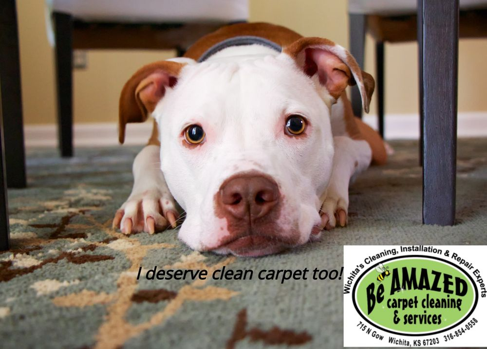 Be Amazed Carpet Cleaning Services 49 Photos 715 N Gow St Wichita Ks Phone Number Yelp