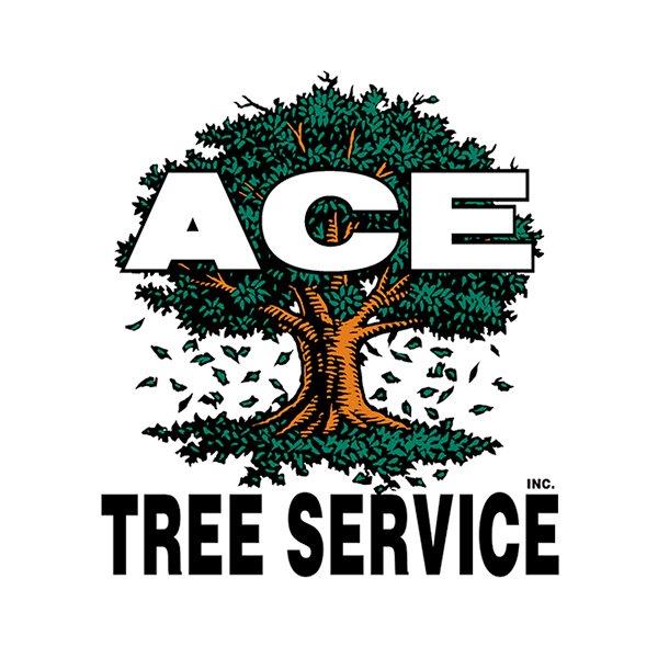 Ace Tree Service: 3900 Archer Dr, Moline, IL