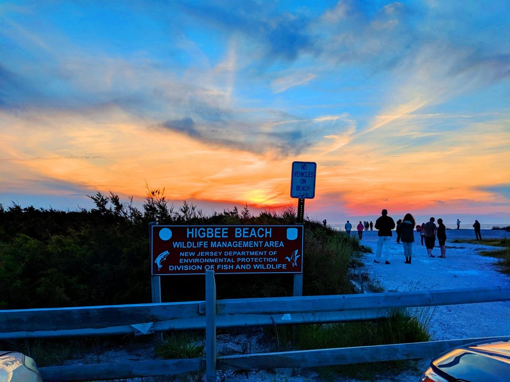 Higbee Beach Wildlife Management Area: County Road 641, Cape May, NJ