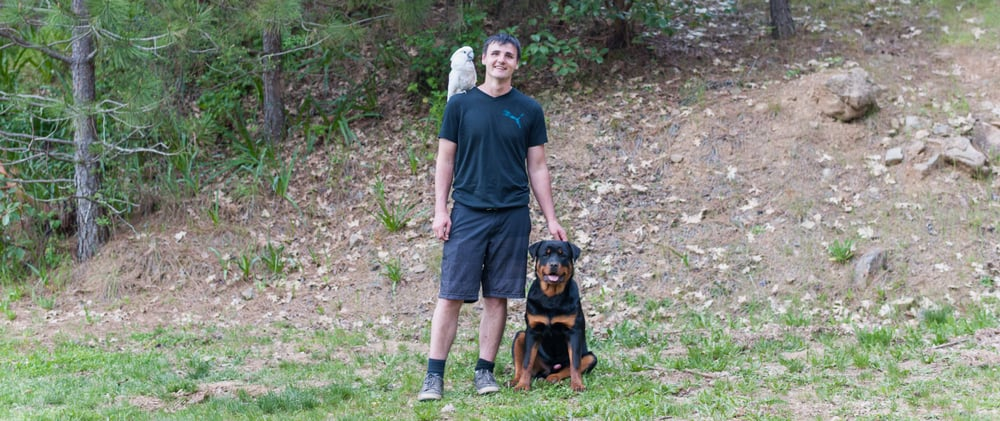 Dog Training Grants Pass