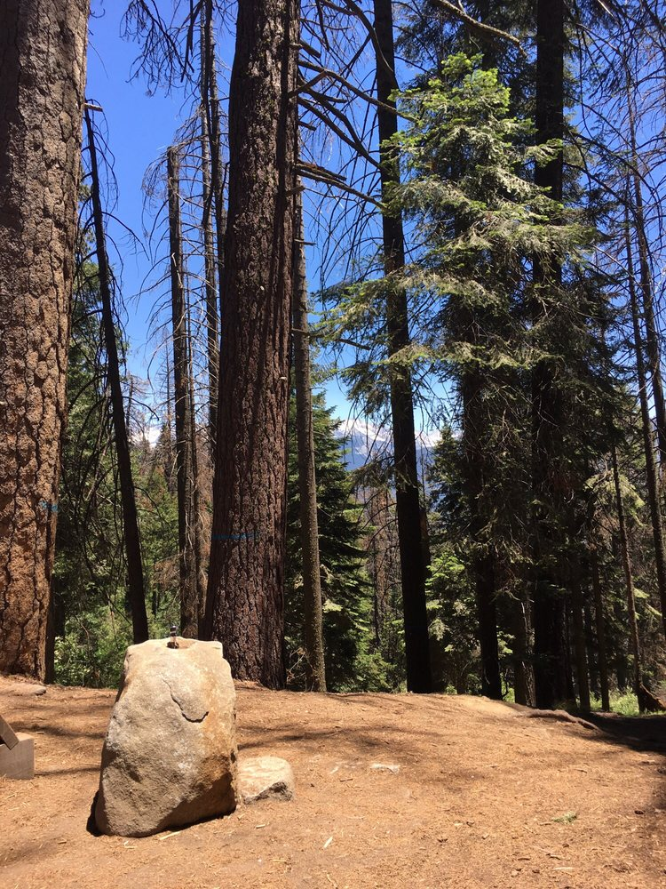 Dorst Creek Campground: 47050 Generals Hwy, Sequoia National Park, CA
