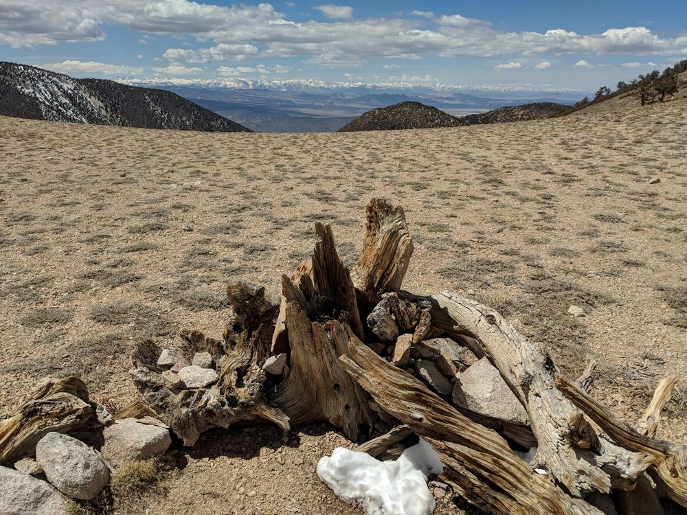 Boundary Peak: Dyer, NV