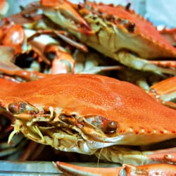 Photo Of Louisiana Cajun Seafood Baton Rouge La United States Boiled Crawfish