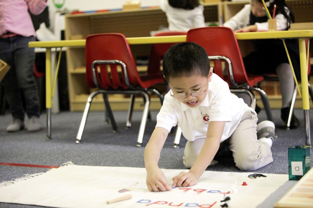 Apple Montessori Schools & Camps - Morris Plains