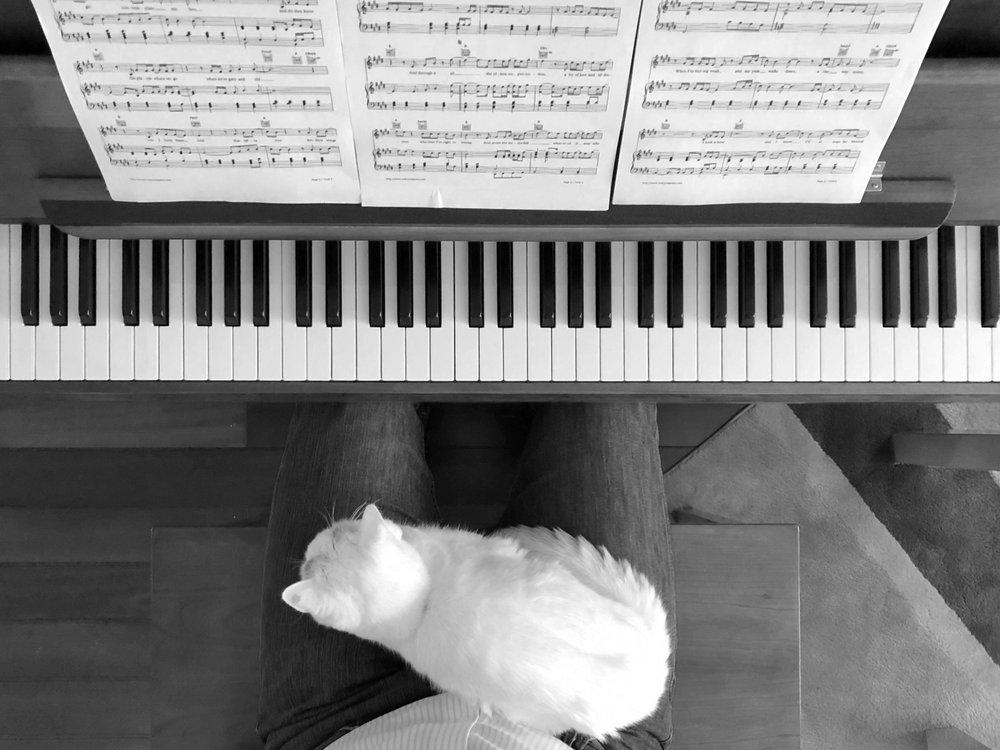 MERRIAM Pianos