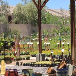 Photo Of Star Nursery Las Vegas Nv United States Well Maintained