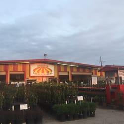 Houston Garden Centers - 21 Photos & 14 Reviews - Nurseries ...