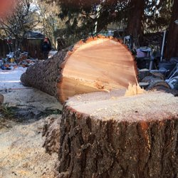 R Tree Service 18 Reviews Services 1710 Commercial St Ne M Or Phone Number Last Updated December 11 2018 Yelp