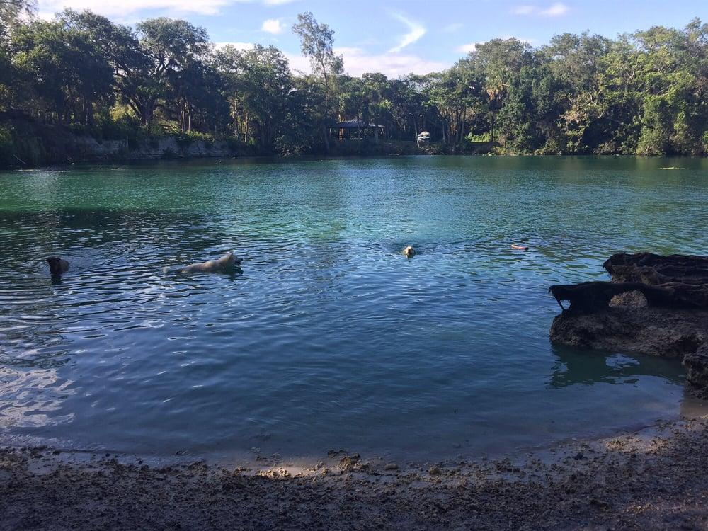 Photos For Snyder Park Bark Park Yelp