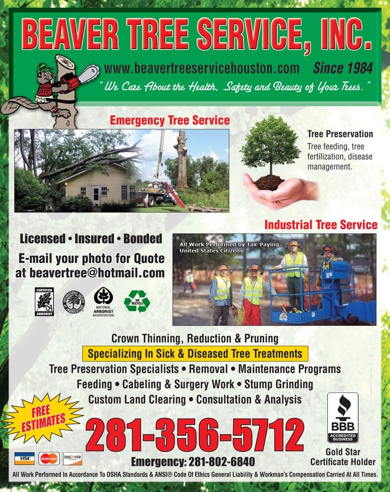Photos For Beaver Tree Service Yelp