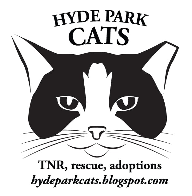 Hyde Park Cats