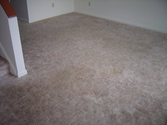Green Solutions Carpet And Upholstery Cleaning Harrisonburg Va
