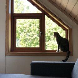 Air Animal Pet Movers 16 Photos Pet Transportation 4120 W