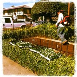 Photo Of Celys Garden Maintenance   Palo Alto, CA, United States