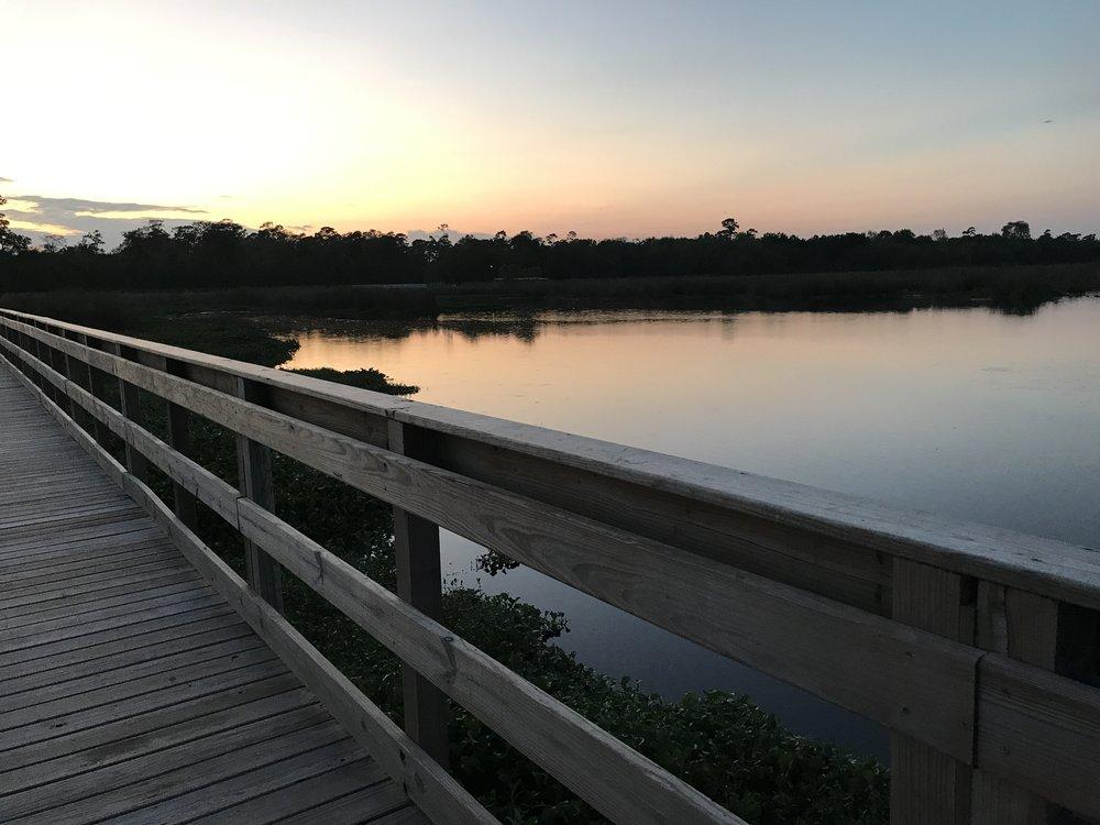 Cattail Marsh: 6088 Babe Zaharias Dr, Beaumont, TX