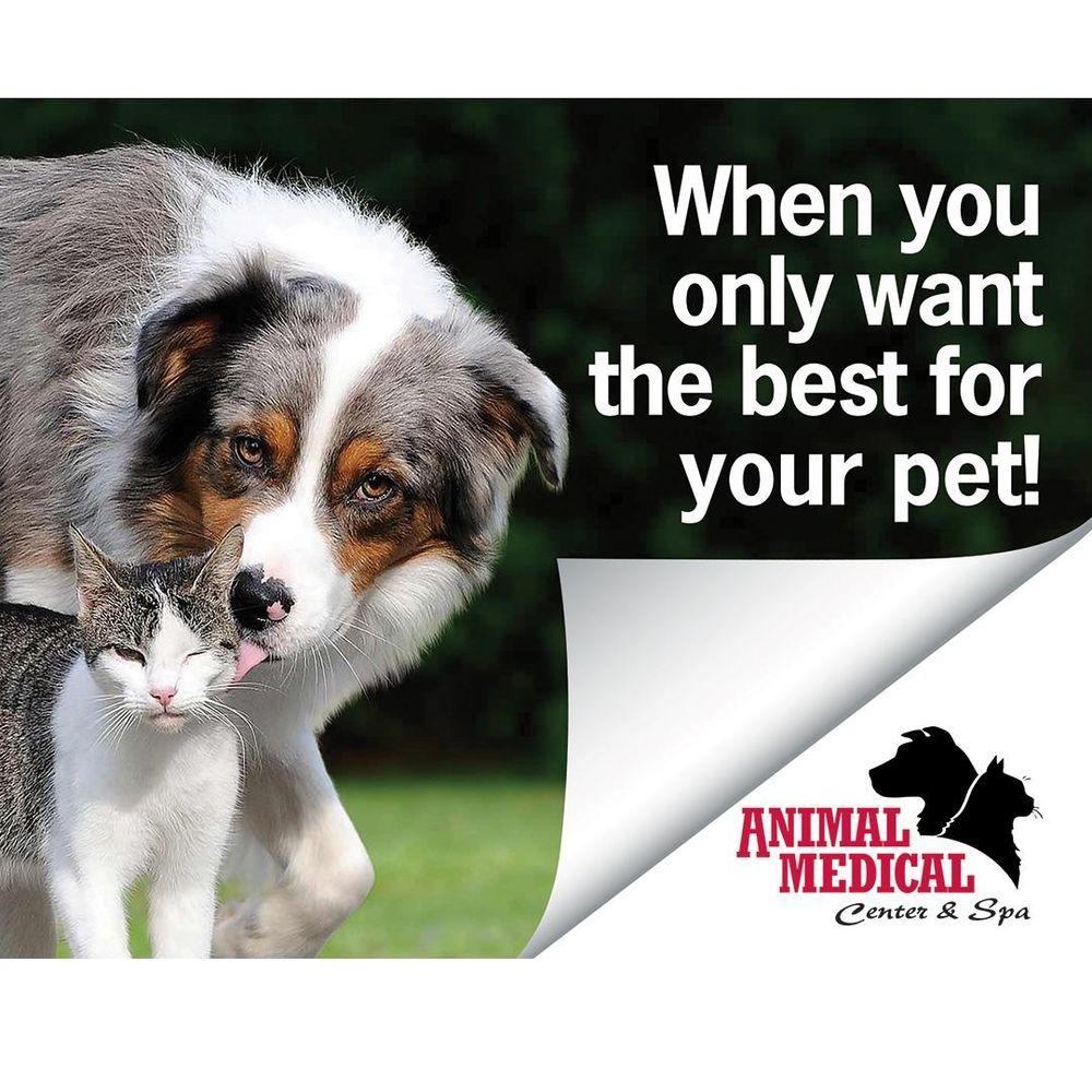 Animal Medical Center & Spa