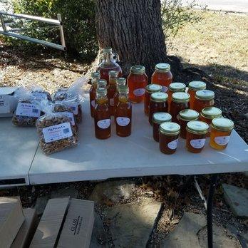 Photo Of Rainbow Gardens   San Antonio, TX, United States. Honey Taking Some