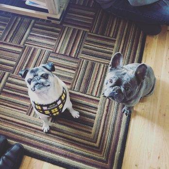 The Pet Doctor - Veterinarians - 8904 W  Ardene St , Boise, ID