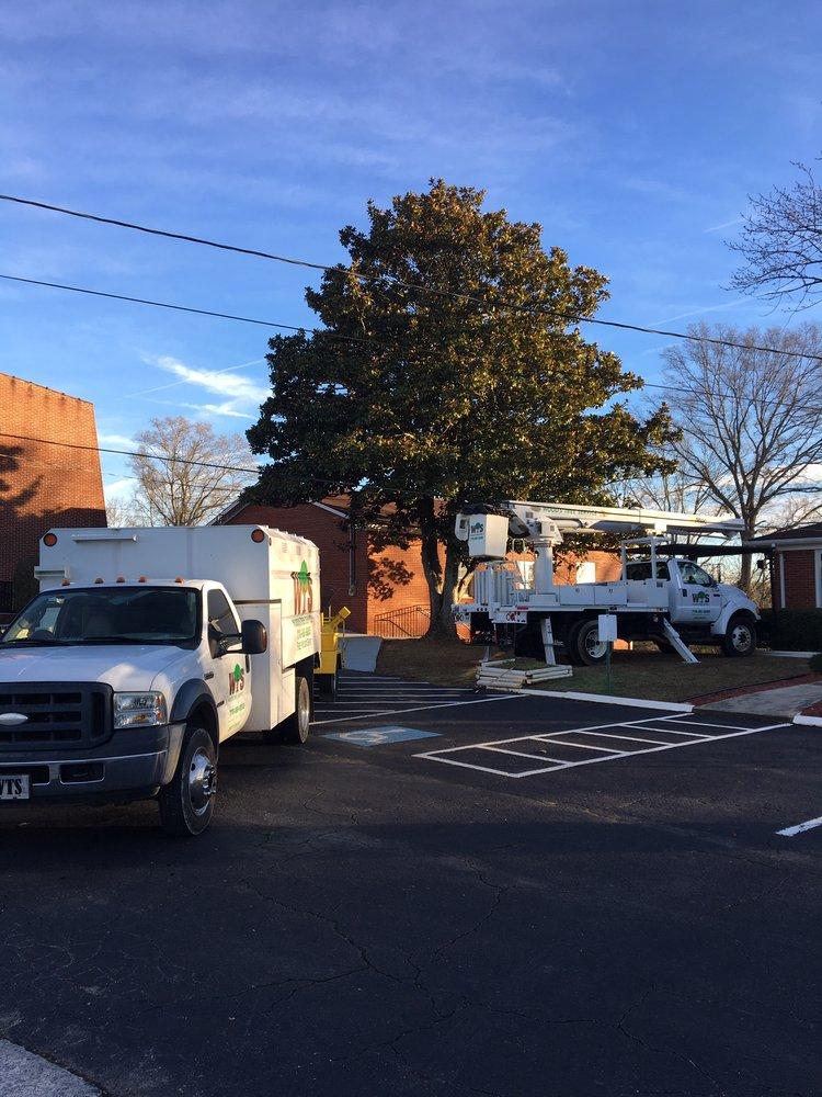 Wood's Tree Service: Cartersville, GA